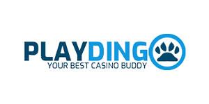 Playdingo review